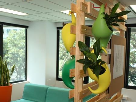 Interior hire plants Sydney