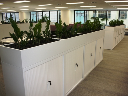 Office hire plants in tambour cabinet